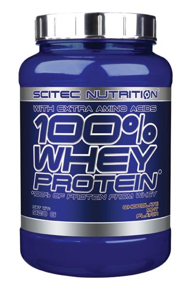 100% Whey Protein 2 lb Chocolate Menta